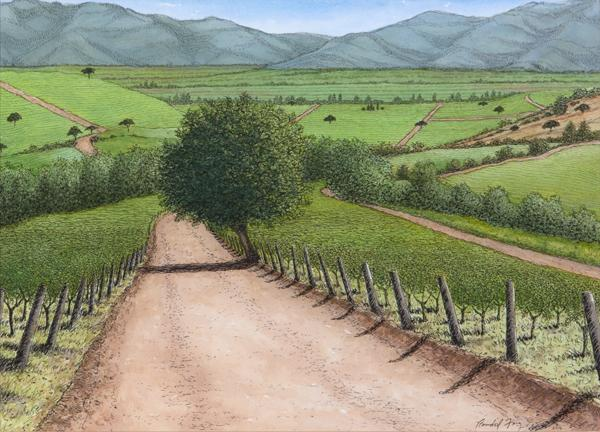 Randal Feig, Madison Vineyard, Casablanca Chile, 2016 Watercolor and ink Photography: Jon Bolton, Racine