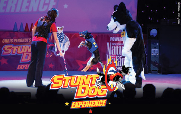 The High Energy Chris Perdoni's Stunt Dog Experience Comes to the Marcus Center for a Limited Engagement!