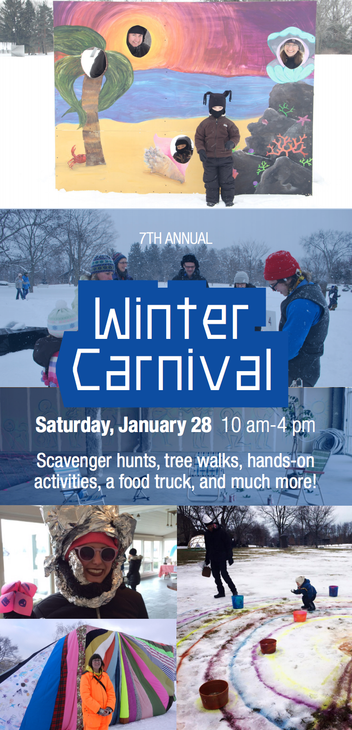 7th Annual Winter Carnival at the Lynden Sculpture Garden, January 28, 2017, 10 am-4 pm