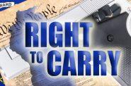 "Representative Mary Felzkowski and Senator David Craig Release the ""Right to Carry Act"""