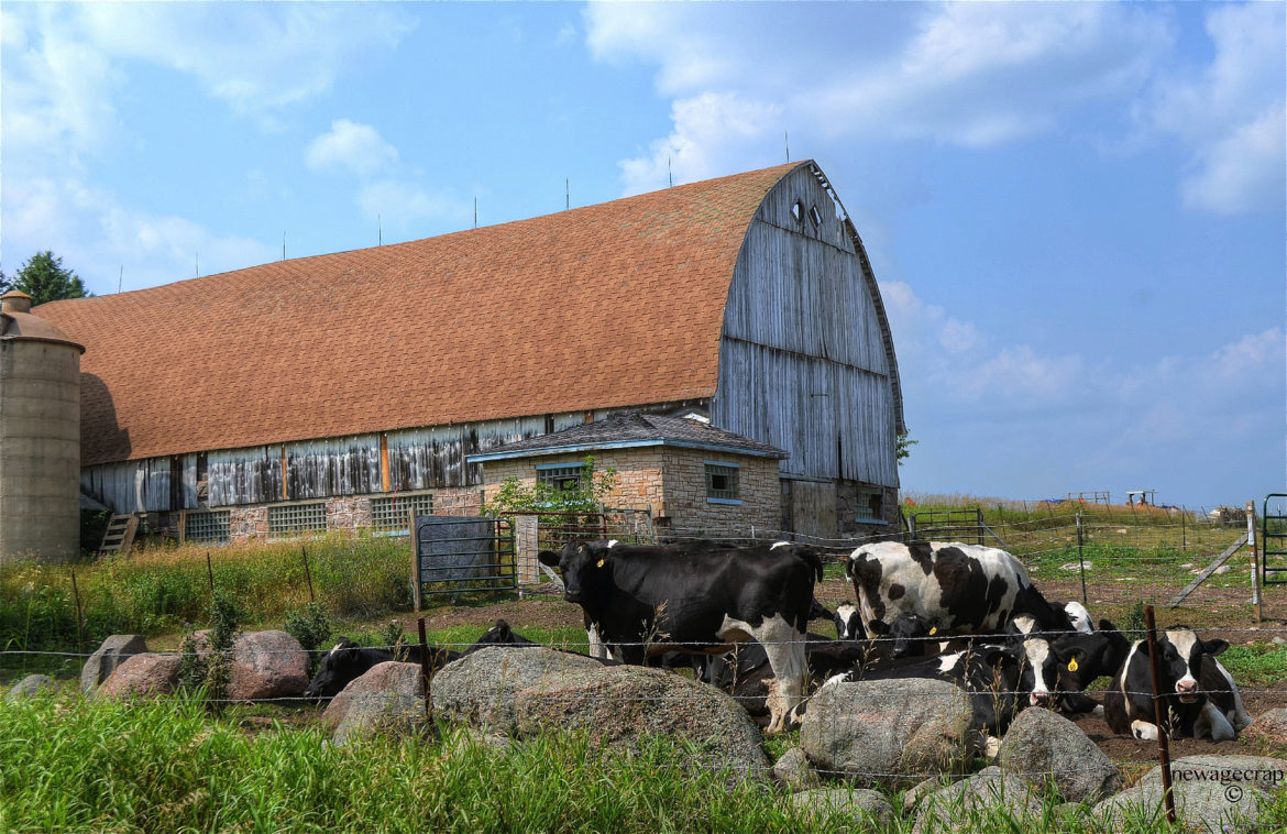 A dairy farm in Wisconsin. Photo by William Garrett / Creative Commons.