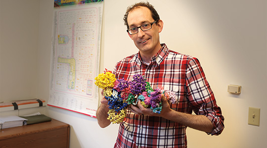 Marquette biological sciences professor honored with university's highest teaching honor