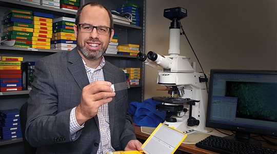 Marquette biomedical sciences professor and chair receives Way Klingler Fellowship in the humanities