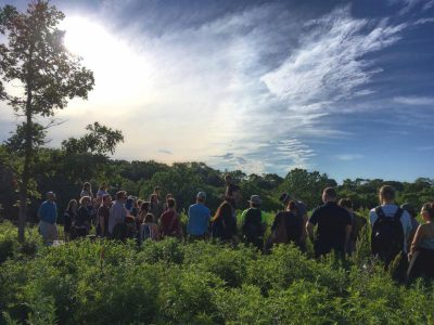 Medicinal Herb Walk with Tippecanoe Herbs
