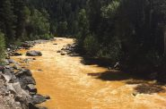 The Animas River between Silverton and Durango in Colorado, USA, within 24 hours of the 2015 Gold King Mine waste water spill. Photo by Riverhugger (Own work) [CC BY-SA 4.0 (http://creativecommons.org/licenses/by-sa/4.0)], via Wikimedia Commons