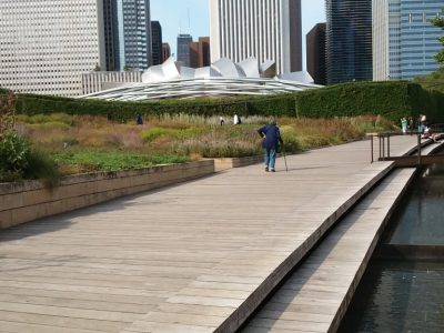 10 Lessons From Chicago's New Landscapes