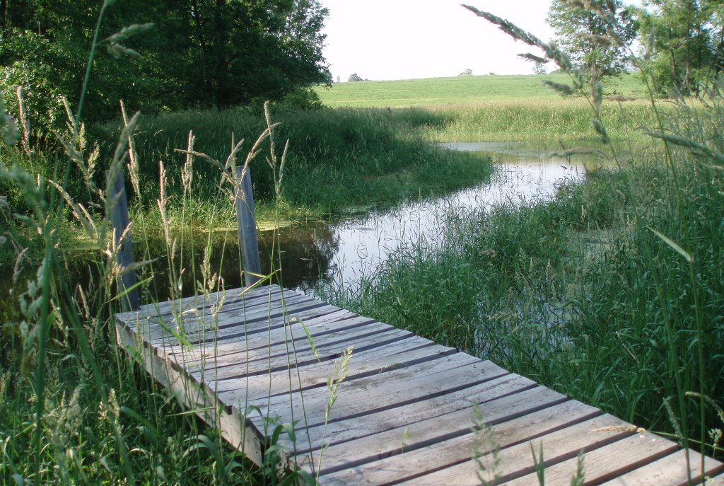 A Greenseam, protected land that acts as a natural sponge for stormwater. Photo courtesy of MMSD.