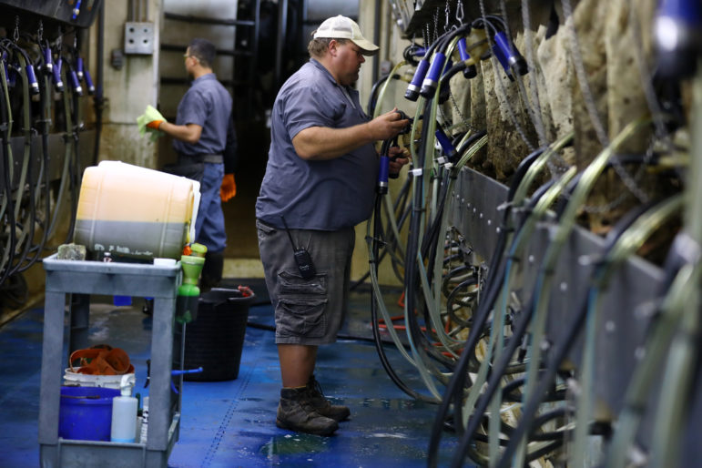 Chuck Ripp, right, troubleshoots a machine in the milking parlor at his farm, Ripp's Dairy Valley, in Dane, Wis., while Uriel Lopez, left, works in the background. Lopez has worked at Ripp's for 10 years. Ripp favors law changes that would allow his workers to remain in the country, return to their home countries for visits and drive cars legally. Photo by Coburn Dukehart / Wisconsin Center for Investigative Journalism.