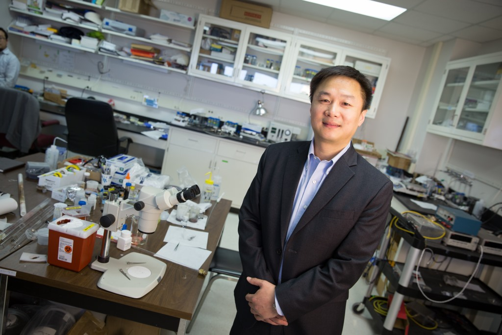 UWM's Junhong Chen named one of the world's most impactful researchers