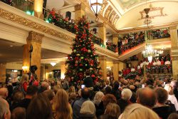 pfister-tree-lighting-1