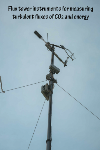 What the flux towers look like close-up. Image by Lindsay Fitzpatrick.