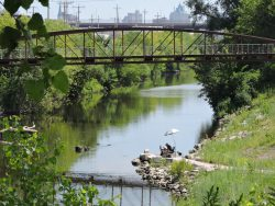 Walk and Talk at the Menomonee Valley