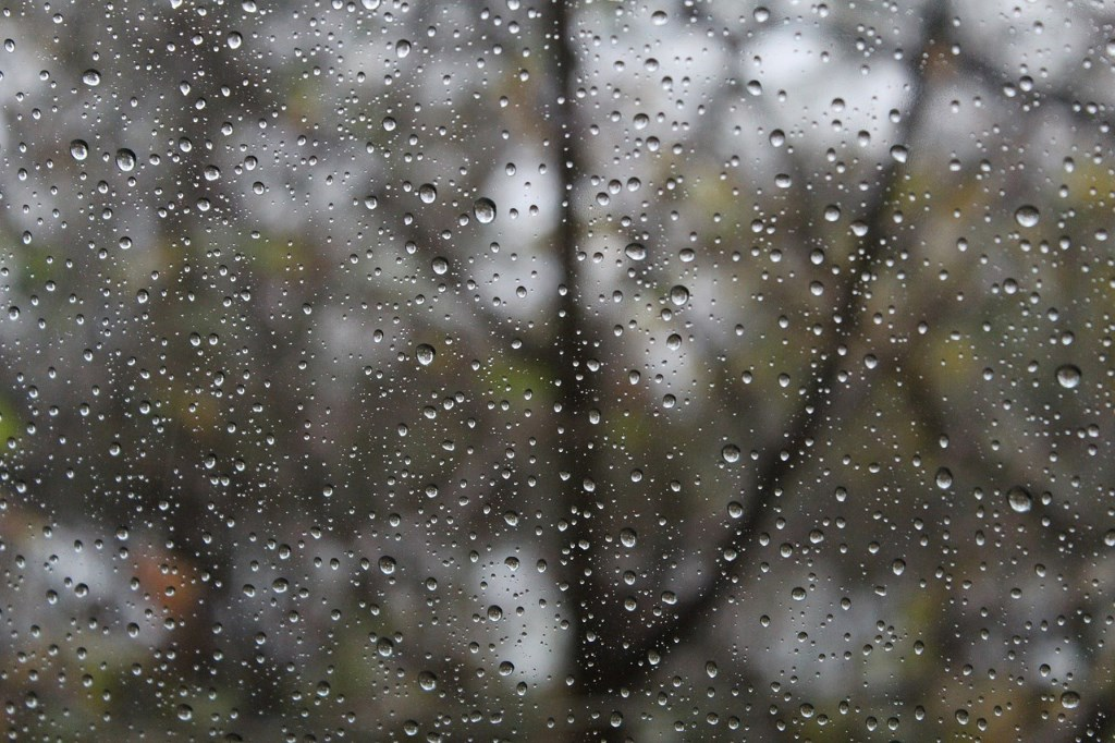 Rainy Day. Photo is in the Public Domain.