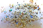 Microplastics. Oregon State University (CC BY-SA 2.0)
