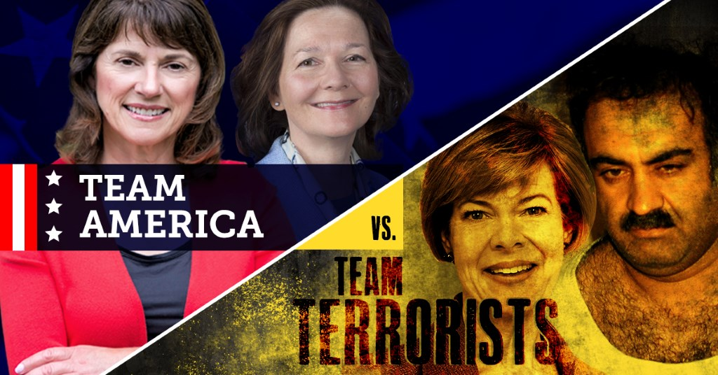 "Leah Vukmir labels Tammy Baldwin as part of ""Team Terrorists."""
