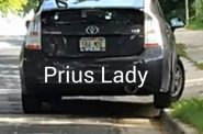 "Image from ""Bay View Prius Lady"" Music Video"