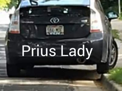 "The Crazy ""Bay View Prius Lady"""