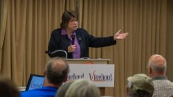 Kathleen Vinehout. Photo courtesy of Kathleen Vinehout campaign.