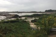 Photo of runoff at the Foxconn site. Photo by Kelly Gallaher courtesy of A Better Mount Pleasant.