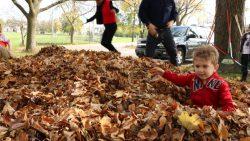 Autumn Celebration. Photo courtesy of the Urban Ecology Center.