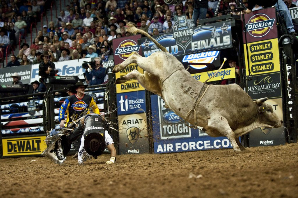 Professional bull riding. U.S. Air Force photo / Tech. Sgt. Michael R. Holzwort