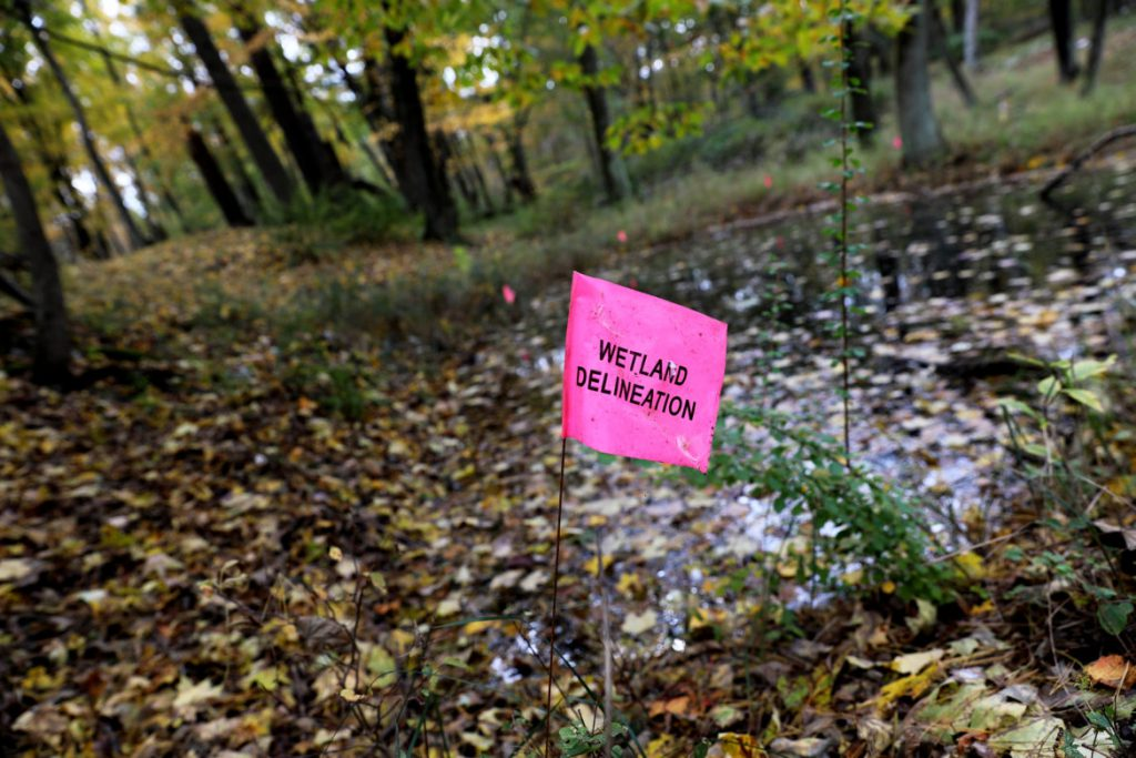 A flag delineating a wetland was placed by the Kohler Co. on the site of a proposed golf course on wetlands that are located inside the Kohler-Andrae State park boundary. A former DNR wetland ecologist says the site contains a rare and fragile dune system of global significance. Photo by Coburn Dukehart/Wisconsin Center for Investigative Journalism.