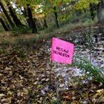 DNR Staff Pressured On Kohler Golf Course?