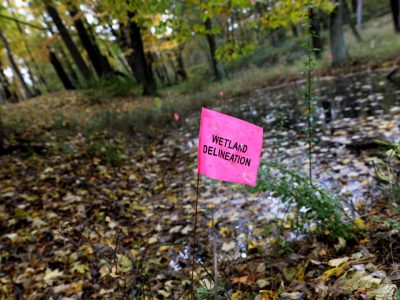 DNR Staff Pressured On Kohler Golf Course?