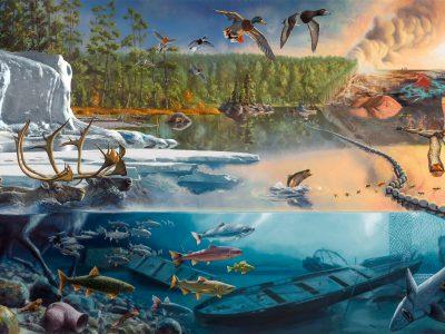 Visual Art: The Not So Great Lakes
