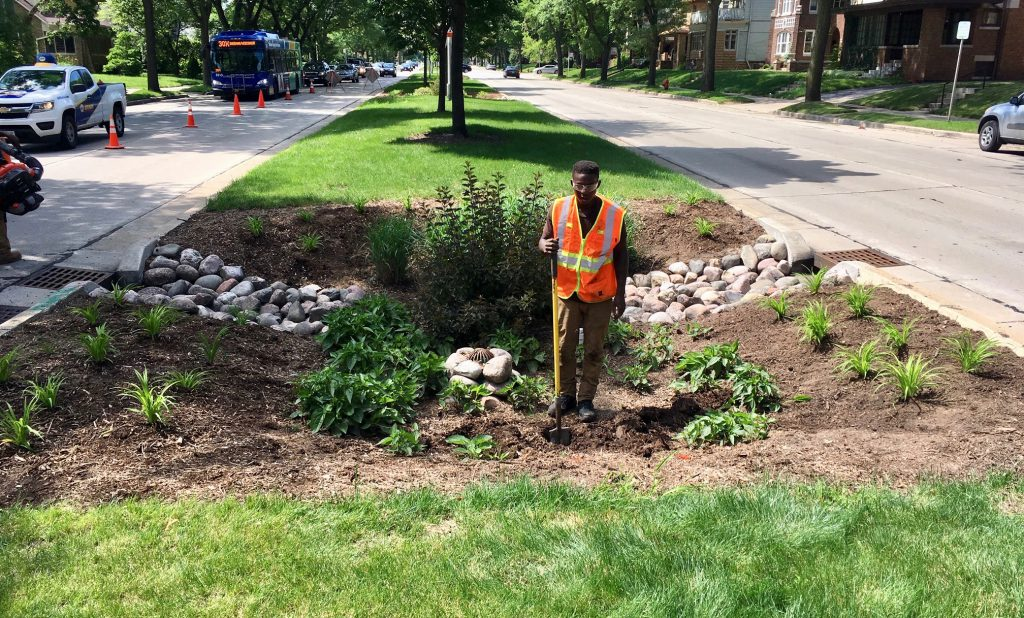 Jermaine Wilson, of Blue Skies Landscaping, monitors and maintains a city-owned bioswale on Sherman Park Boulevard in summer 2018. Photo by Jeremy Davis.
