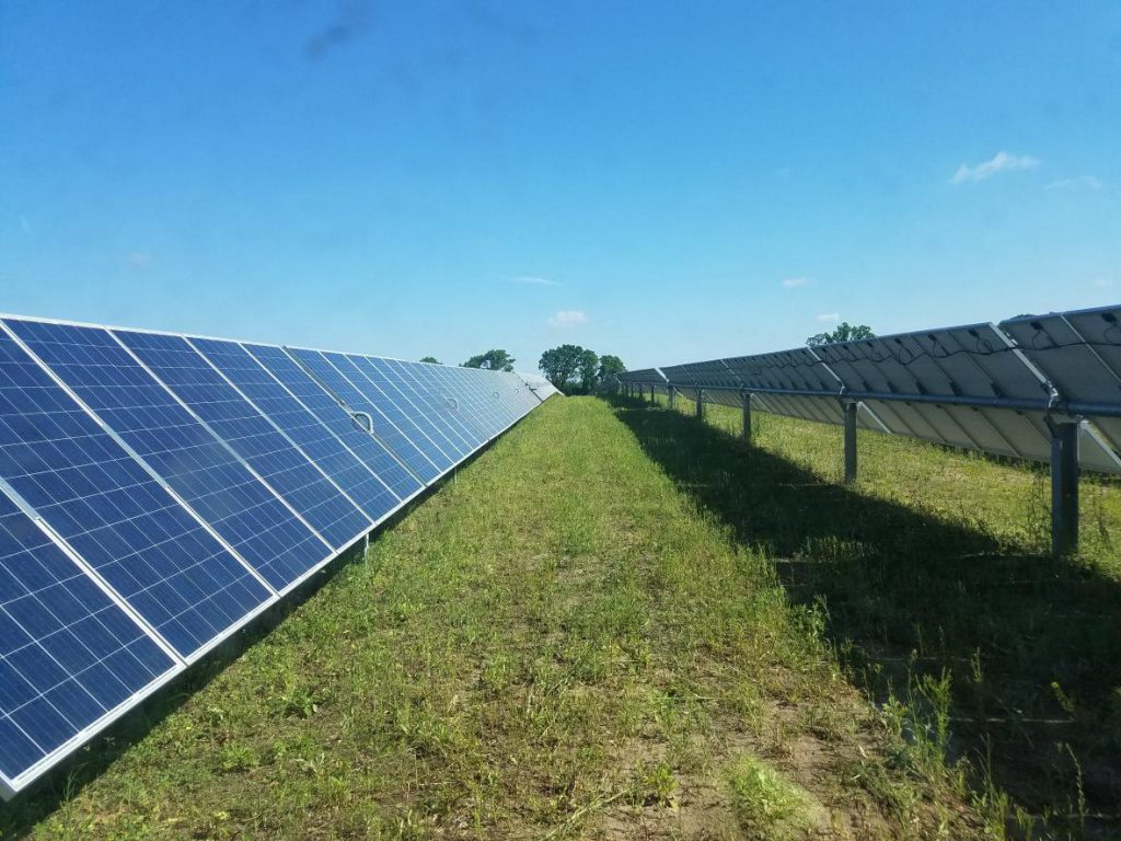 The 149-megawatt Badger State Solar Project is planned for private land in the Towns of Jefferson and Oakland. Photo courtesy of Ranger Power.