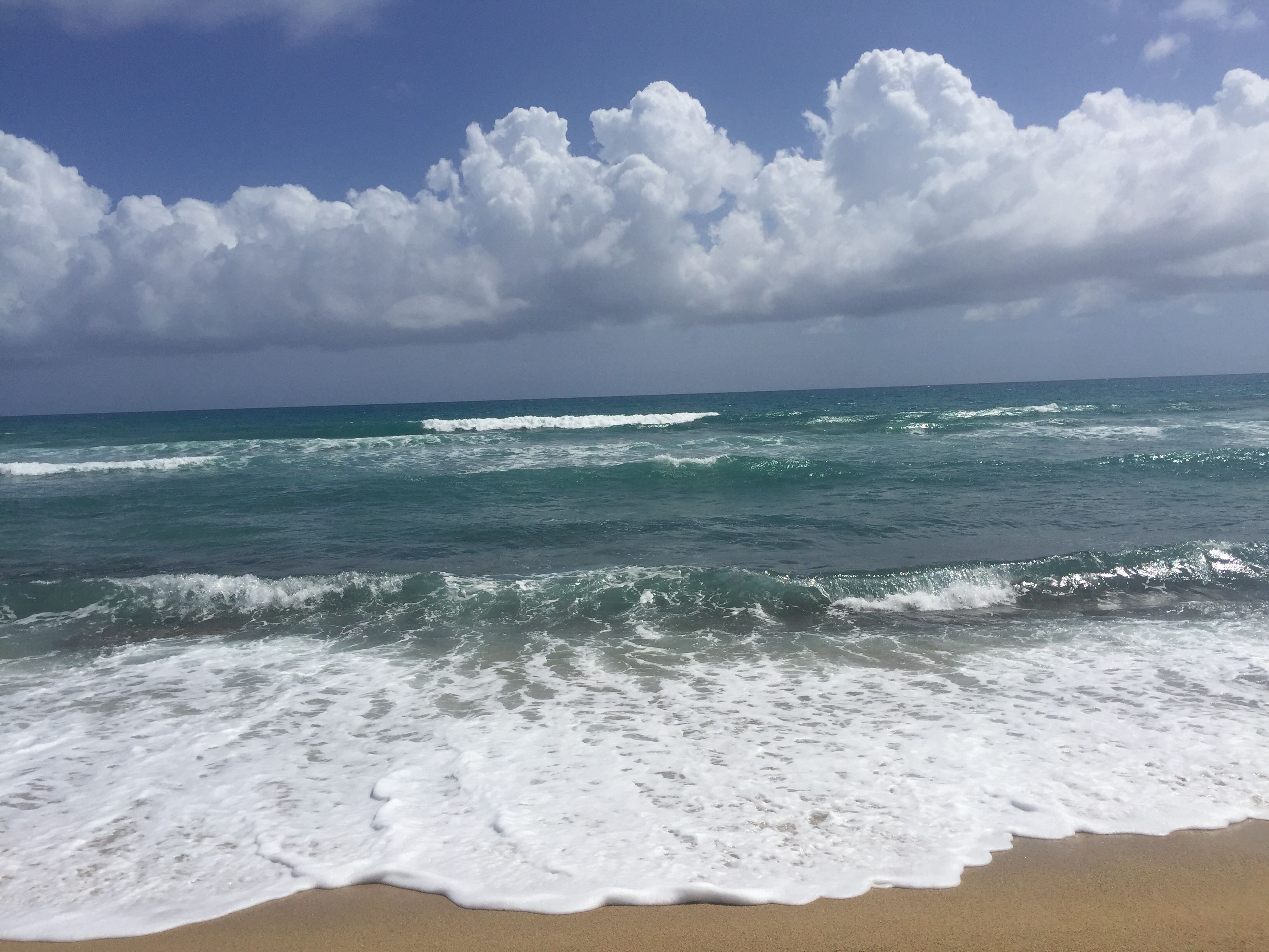 A beach in Puerto Rico. Photo by Dave Reid.