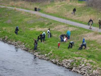 Entertainment at a Distance: Join the Return of the Spring River Cleanup