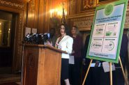 Rep. Melissa Sargent, D-Madison, spoke at the Capitol Thursday, April 18, 2019, about a bill she's going to introduce that would legalize marijuana for recreational and medical use. Photo by Laurel White/WPR.