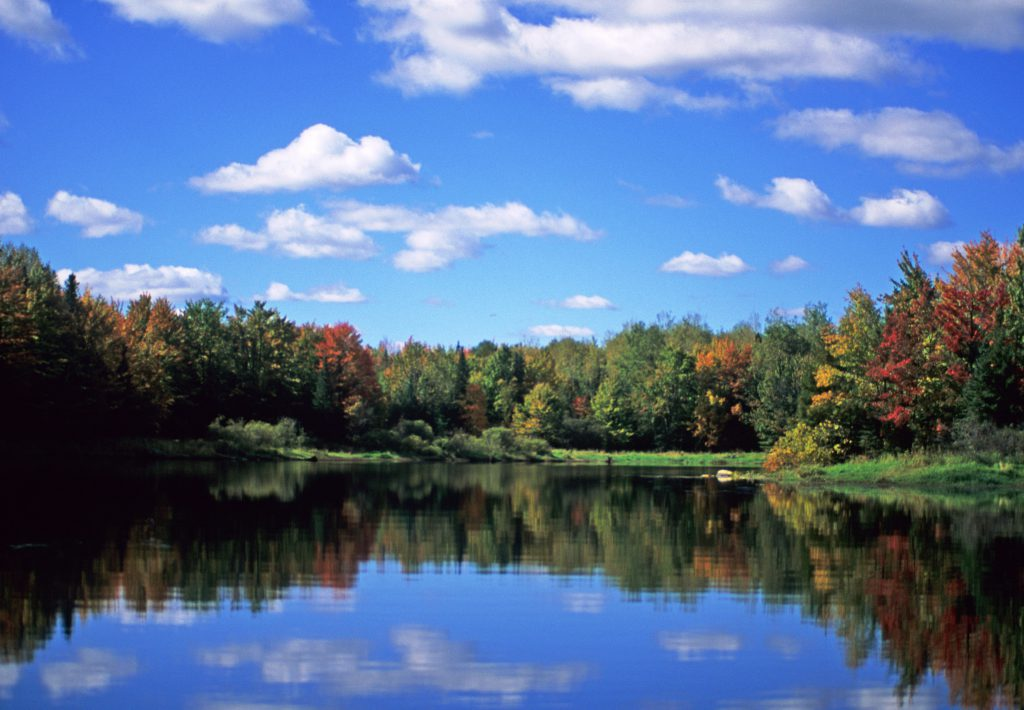 Willow Flowage Scenic Waters Area. Photo from the Wisconsin Department of Natural Resources (CC BY-ND 2.0)