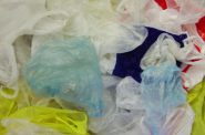 Plastic shopping bags. Photo is in the Public Domain.