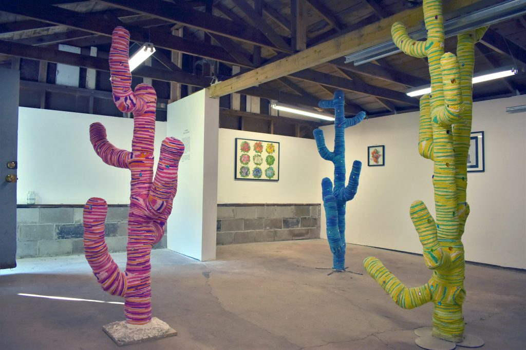 Gluon Gallery. Photo by Brendan Murphy.