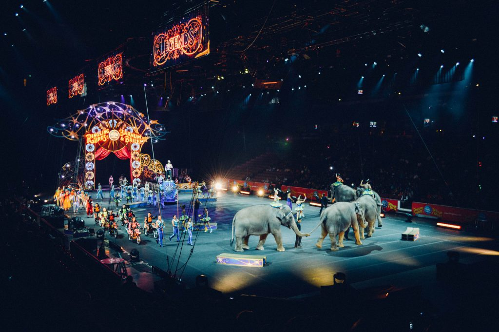 Circus. Pixabay License. Free for commercial use. No attribution required.