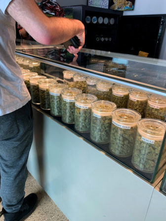 A University of Wisconsin-Madison student shops for marijuana at A Cut Above Dispensary in Denver on March 23, 2019. Thirty-three states allow cannabis for medical uses. Colorado is one of 11 states plus the District of Columbia where recreational use of marijuana also is legal. Both are illegal in Wisconsin. Photo by Suzie Kazar / Wisconsin Watch.