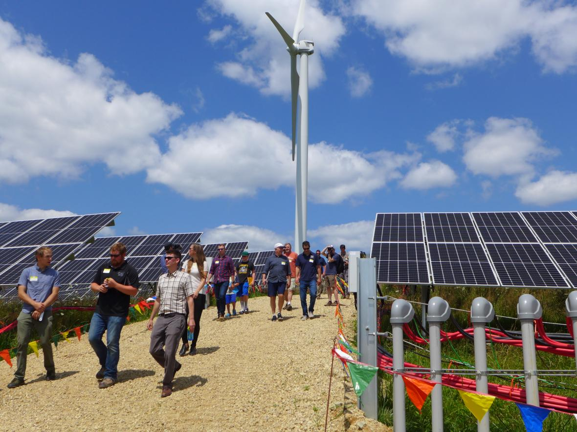 Organic Valley and BluEarth Renewables lead tours of the new solar installation in Cashton, Wisc. on August 1, 2019. Hope Kirwan/WPR.