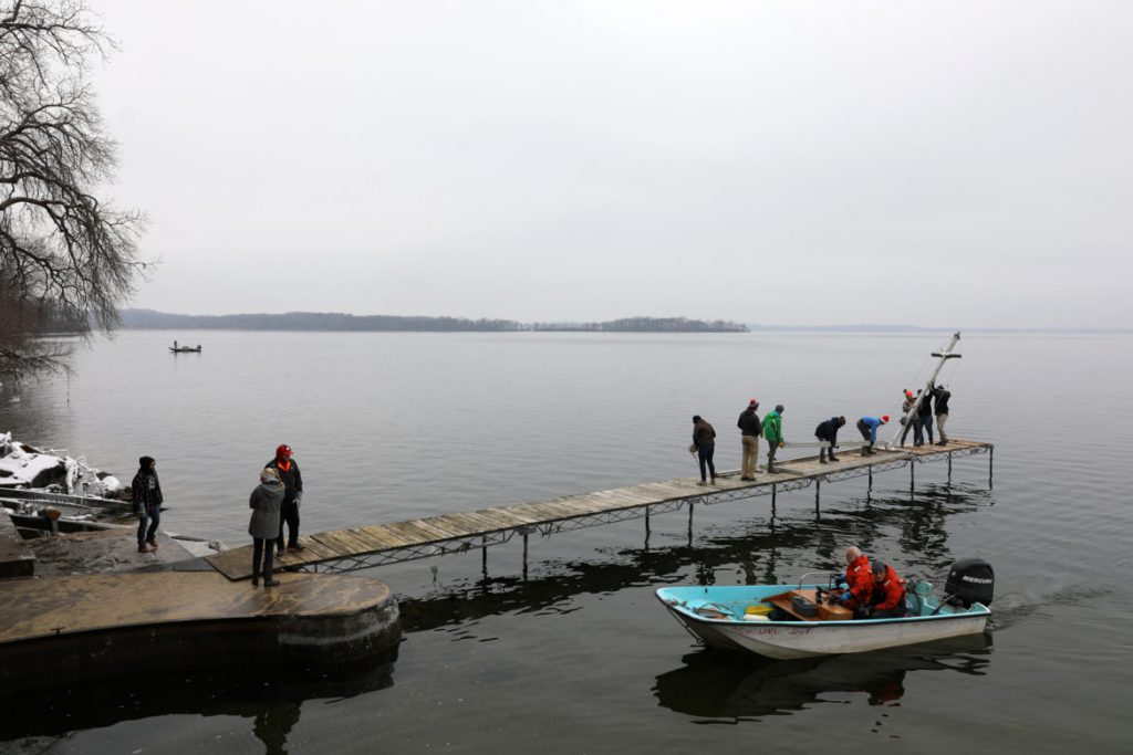 Dave Harring, facilities and equipment manager for the University of Wisconsin-Madison Center for Limnology, leads students and researchers in removing the center's dock before the onset of winter on Nov. 30, 2018. Researchers scrape the dock's wooden pilings for zebra mussels, counting them to track the density of the invasive species in the lake. The mussels came to the Great Lakes in ballast water from ocean-going freighters and have since spread to hundreds of inland lakes. Photo by Coburn Dukehart / Wisconsin Watch.
