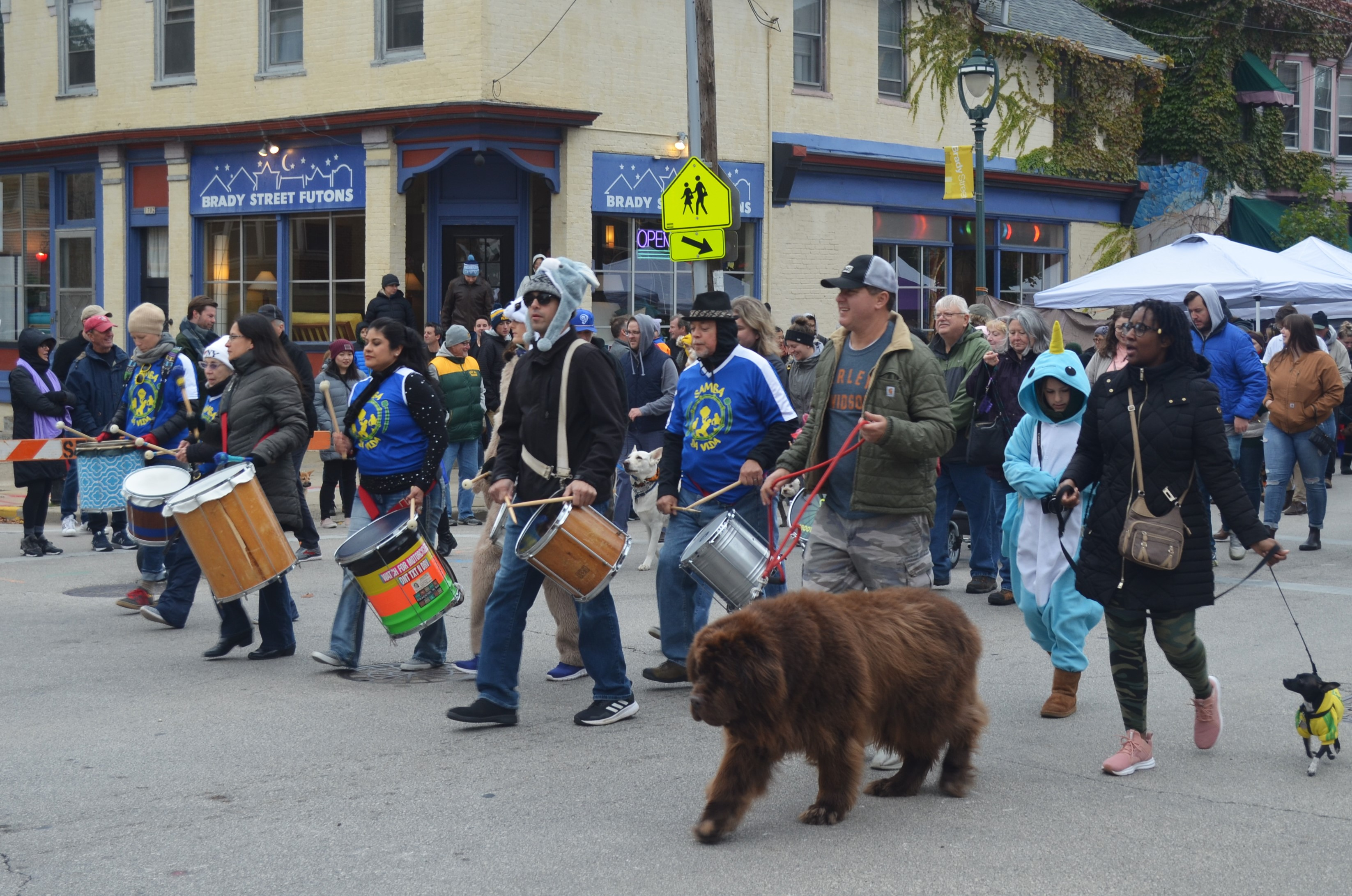 Pet Parade with Samba da Vida. Photo taken by Jack Fennimore.