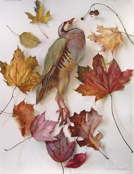 Katie Musolff Chukar Amongst the Leaves, 2019 Watercolor