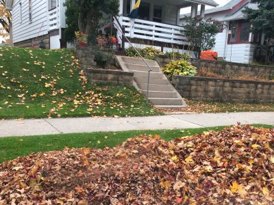 City Hall: City Will Pick Up Leaves Until November 22nd
