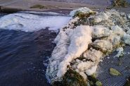 Foam present in Starkweather Creek in October shows elevated levels of PFOS and PFOA. Photo courtesy of the DNR.