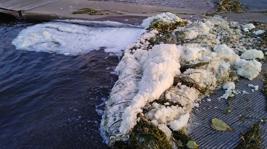 Foam present in Starkweather Creek in October 2019 shows elevated levels of PFOS and PFOA (PFAS chemicals). Photo courtesy of the DNR.
