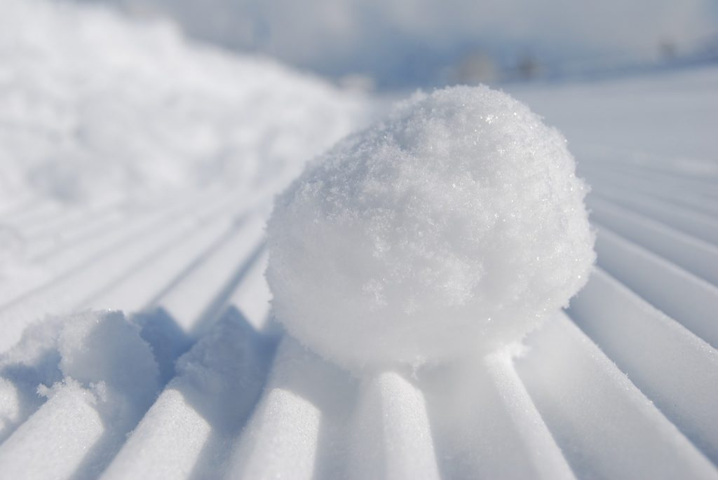 Snowball. Pixabay License. Free for commercial use. No attribution required.
