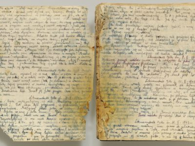 Diary Found In Auschwitz Makes U.S. Premiere