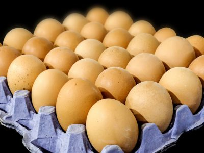 State's Egg Producers Set New Records