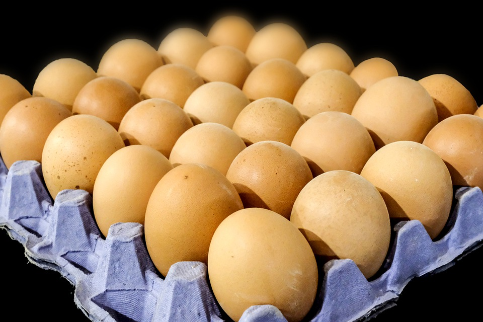 Eggs. Pixabay License. Free for commercial use. No attribution required.